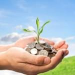 Profit and sustainability