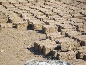 green construction: adobe bricks