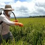 pesticide ground spraying