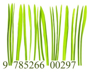 green barcode, corporate sustainability