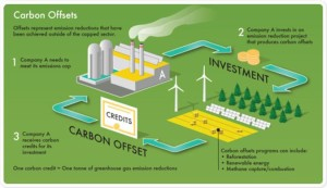 Carbon offsets. Corporate sustainability