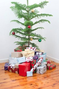 Christmas tree, potted, with gifts