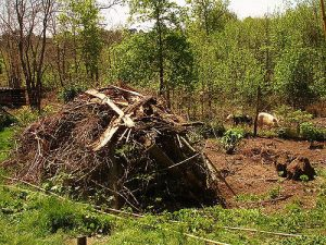 compost pile, living a sustainable lifestyle