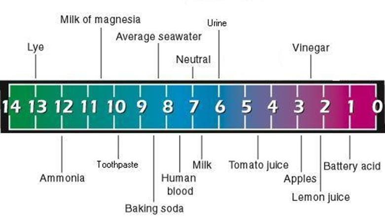 pH factor chart -- washing soda baking soda