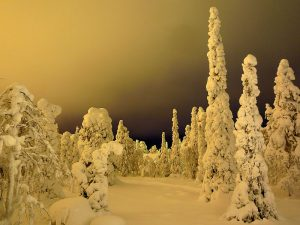 Light pollution, clouds and snoe