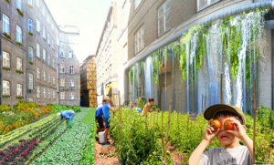 Urban farming in Copenhagen