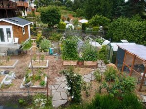 homesteading garden. living a sustainable lifestyle